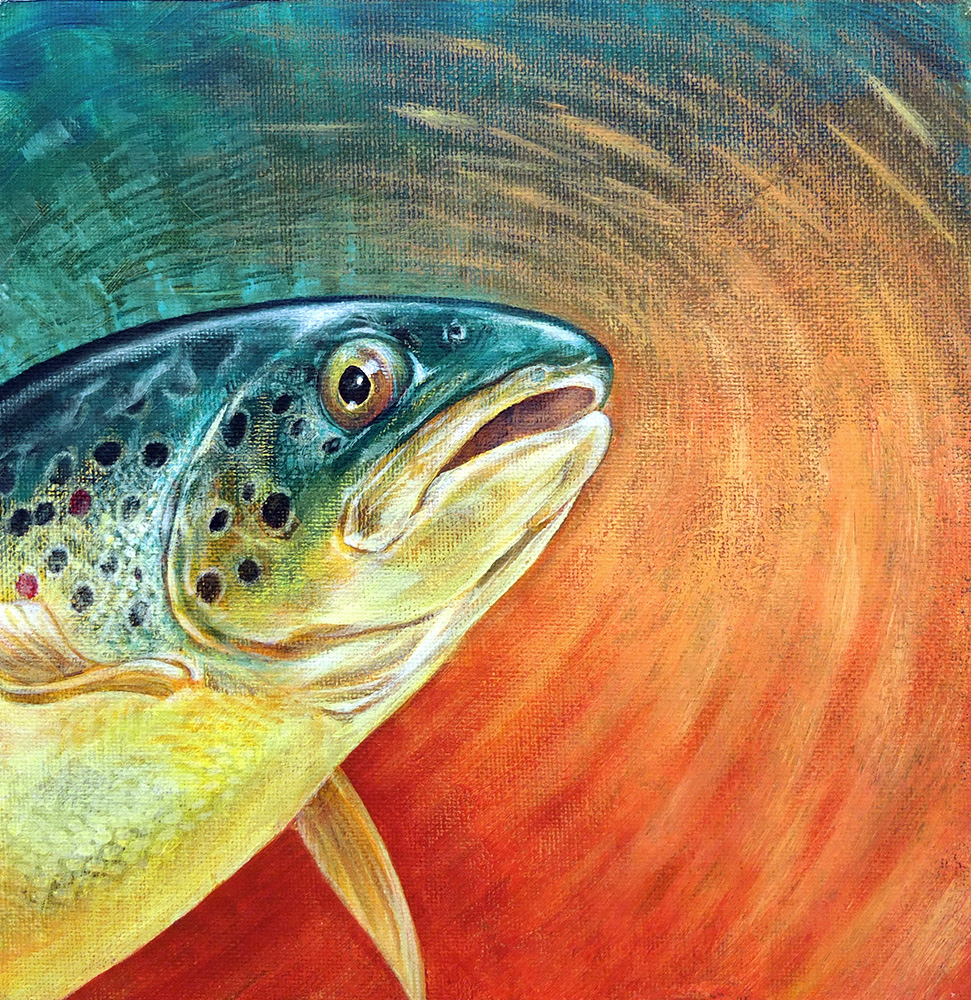 Original painting of a Brown Trout