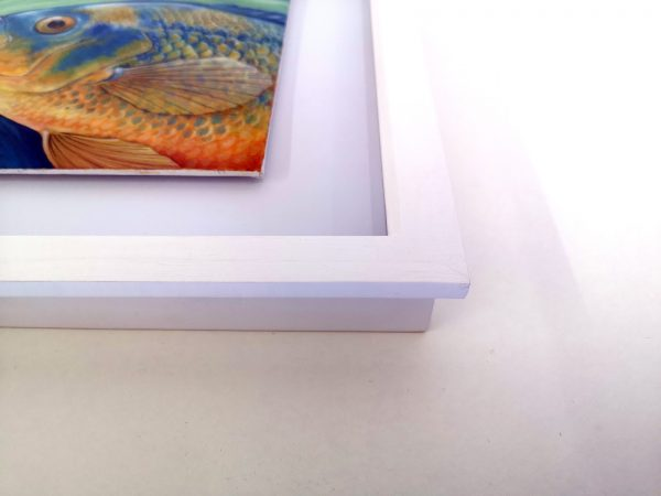 Corner of frame containing cichlid painting