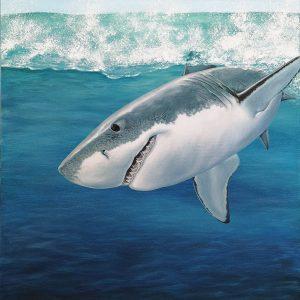 Great white shark painting - acrylic fish art original