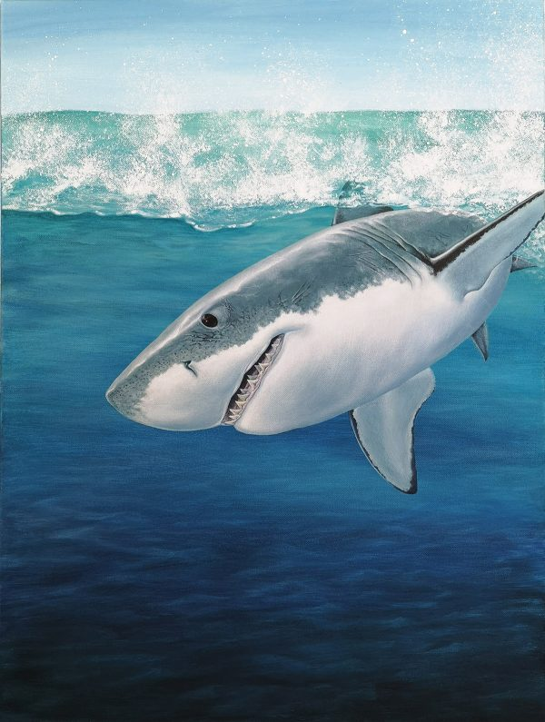 Great white shark painting - acrylic fish art original