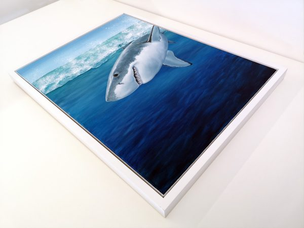Great White shark painting in frame