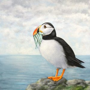 Atlantic Puffin painting - acrylic bird art original