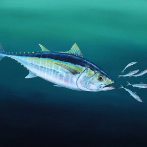 Tuna fish painting in acrylic