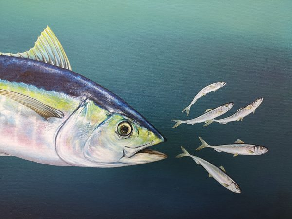 Detail of a Tuna painting in acrylic