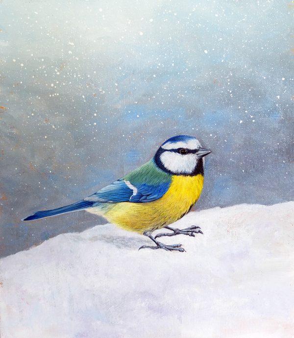 Blue Tit painting for sale
