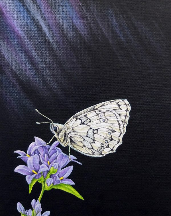 Marbled White butterfly painting