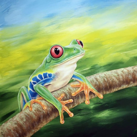 Original painting of a Red-eyed Tree Frog