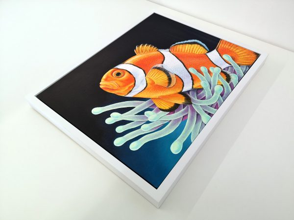 Framed painting of a Clownfish
