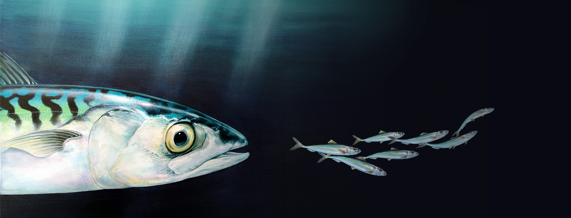 Atlantic mackerel painting