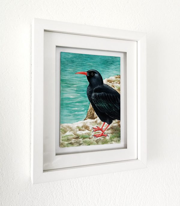 Chough painting in a white picture frame