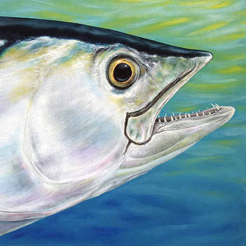 Dogtooth Tuna Painting - acrylic fish art original