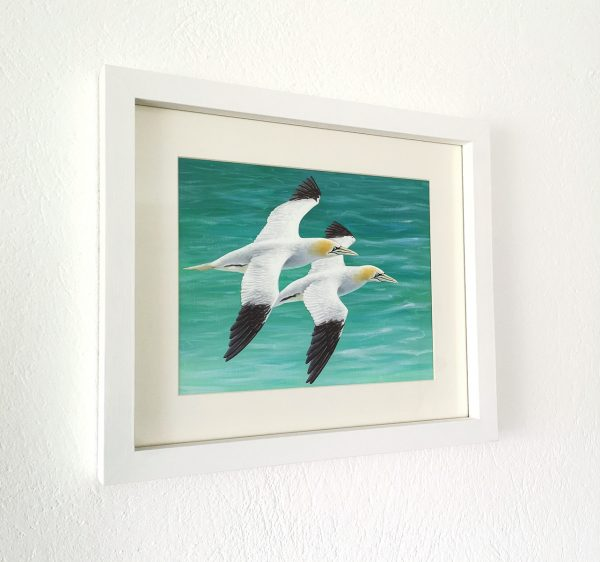 Gannet painting in a white pitcure frame