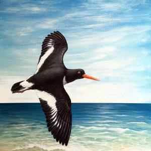 Oystercatcher painting - acrylic bird art original