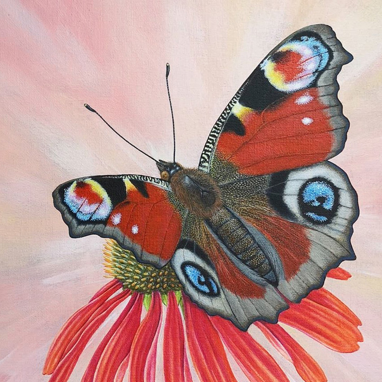 Peacock butterfly painting - acrylic art original