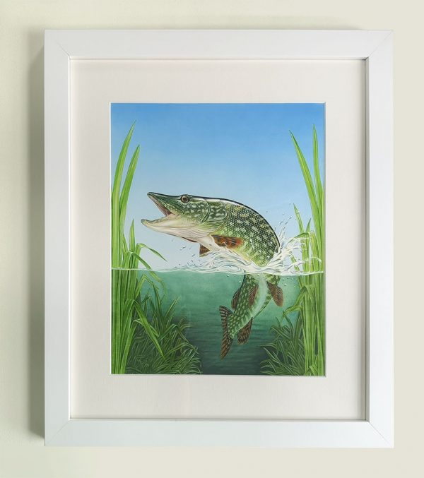 Framed painting of a Pike