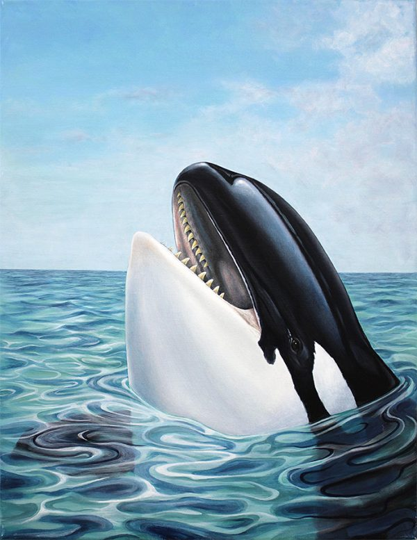 Painting of an Orca whale