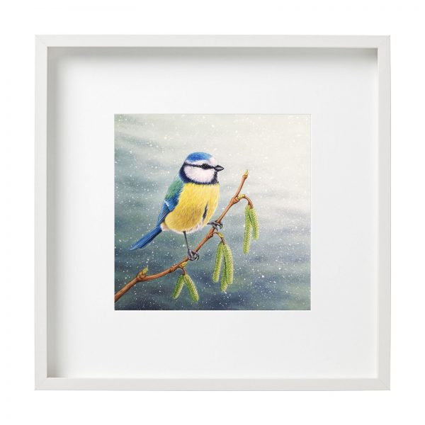 Framed painting of a Blue Tit bird