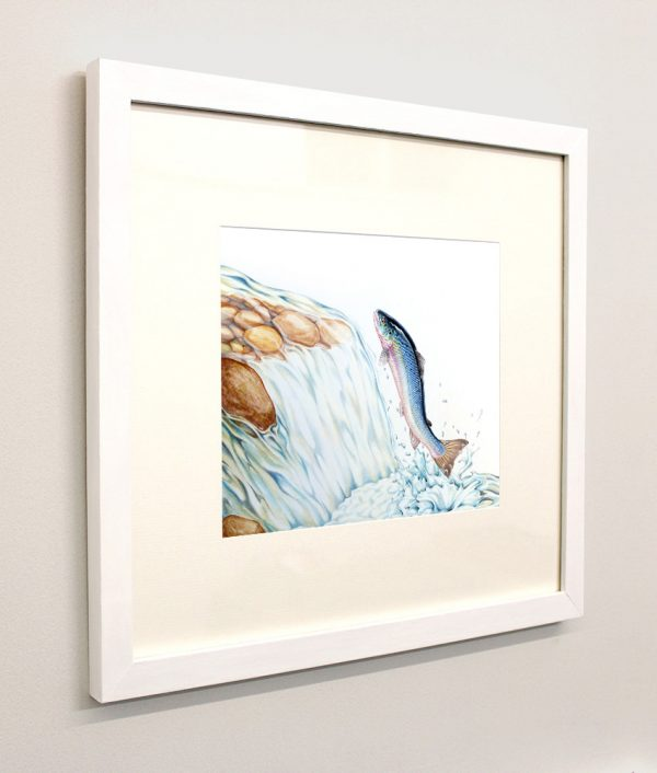 Framed picture of a leaping salmon