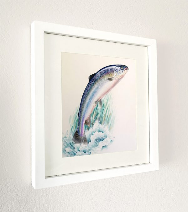 Framed painting of a Salmon