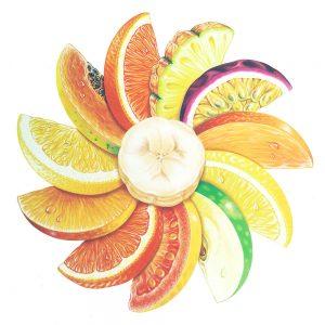 Circle of fruit illustration